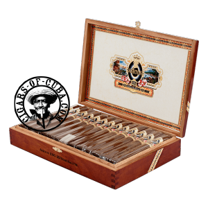 Ashton Esg 23 Year Salute Box of 25