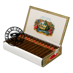 Saint Luis Rey Regios Box of 25